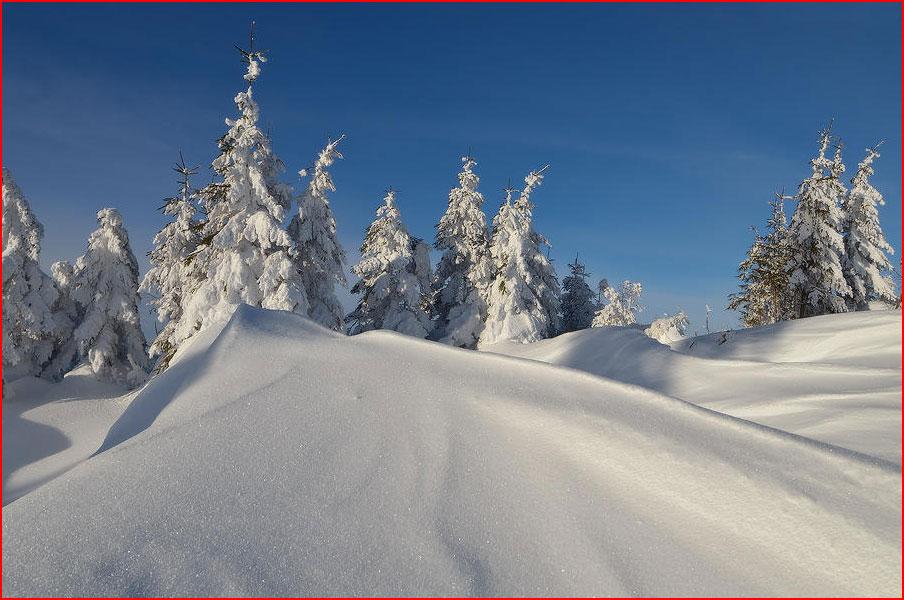 Зимний Кукул  (гей блюсик 10035)