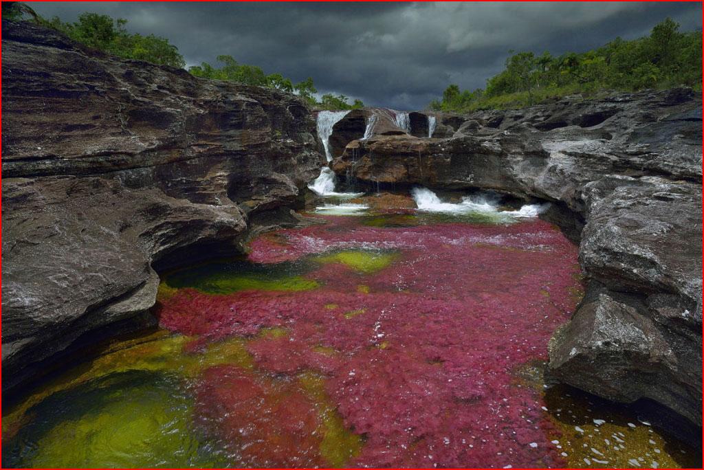 Самая красивая река  (гей блюсик 10391)