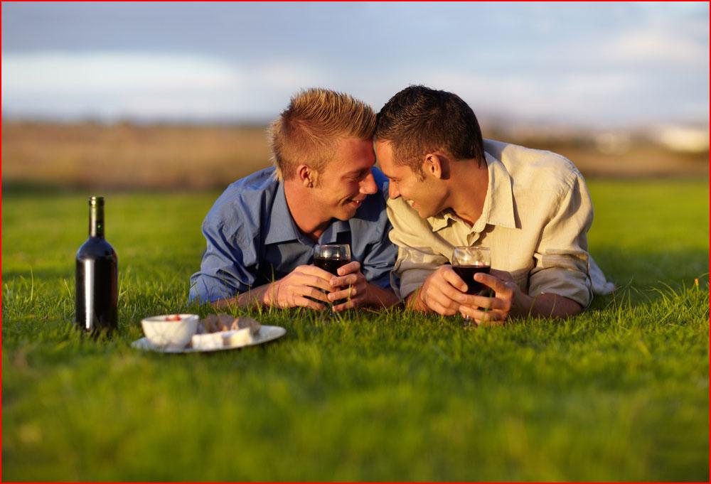 Вдвоём на лужайке  (гей блюсик 10524)