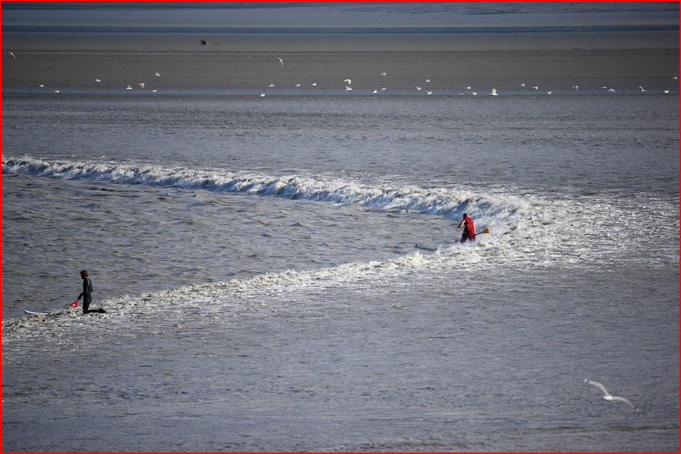 Аляска: на гребне волны  (гей блюсик 11084)
