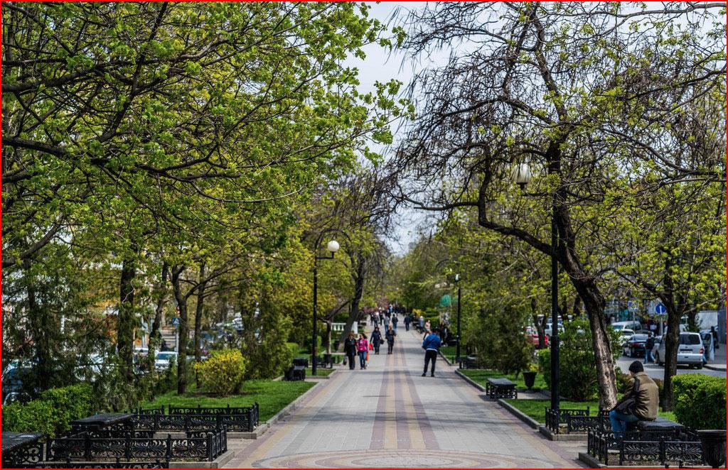 Ростовский весенний этюд  (гей блюсик 12039)