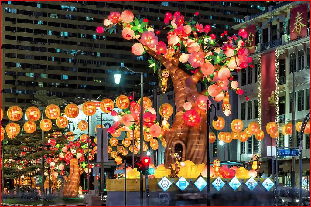 Сингапурский Chinatown готовится к Новому Китайскому Году  (гей блюсик 13111)
