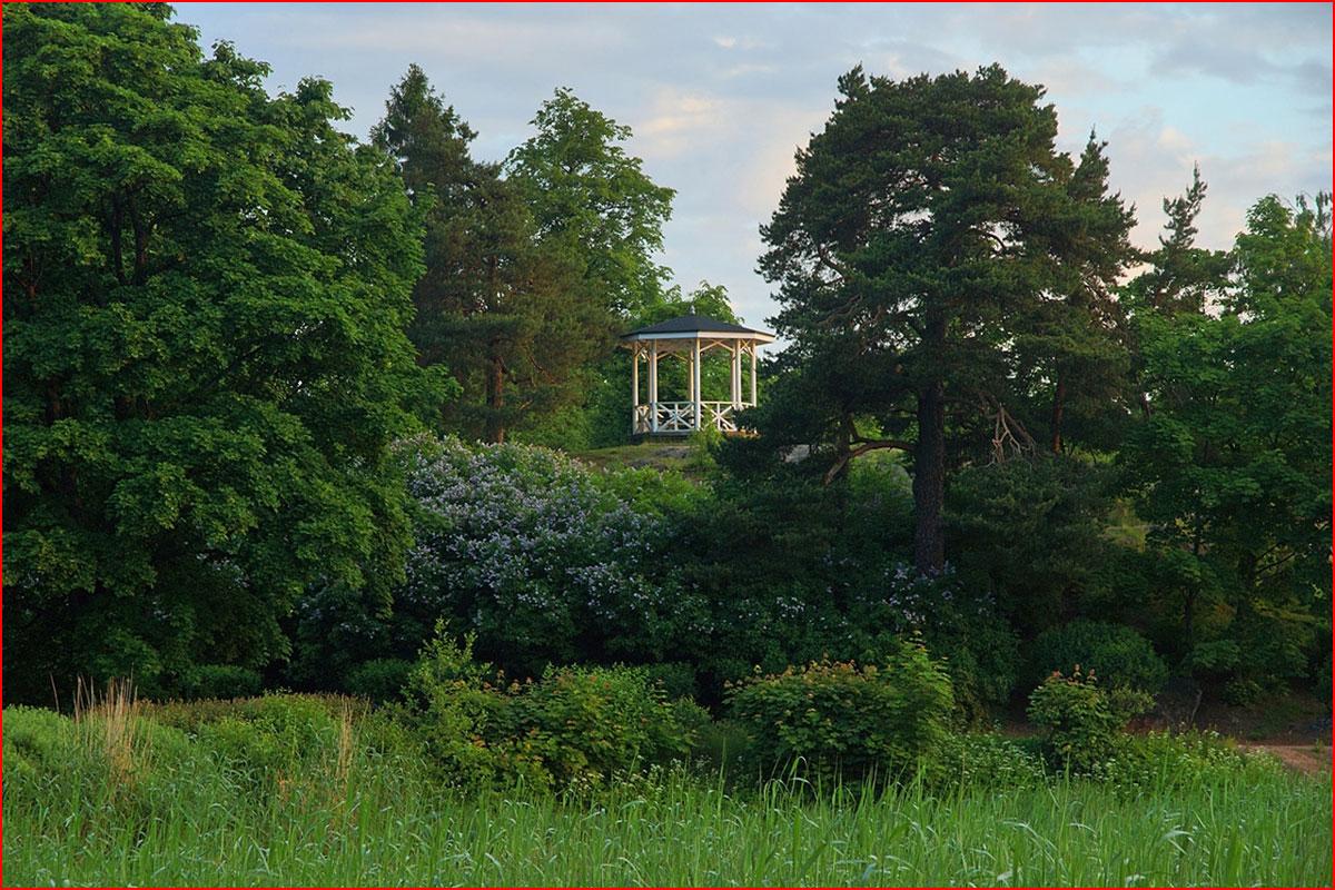 Парк Монрепо  (гей блюсик 13623)