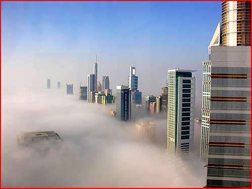Туман в Дубае  (гей блюсик 1479)