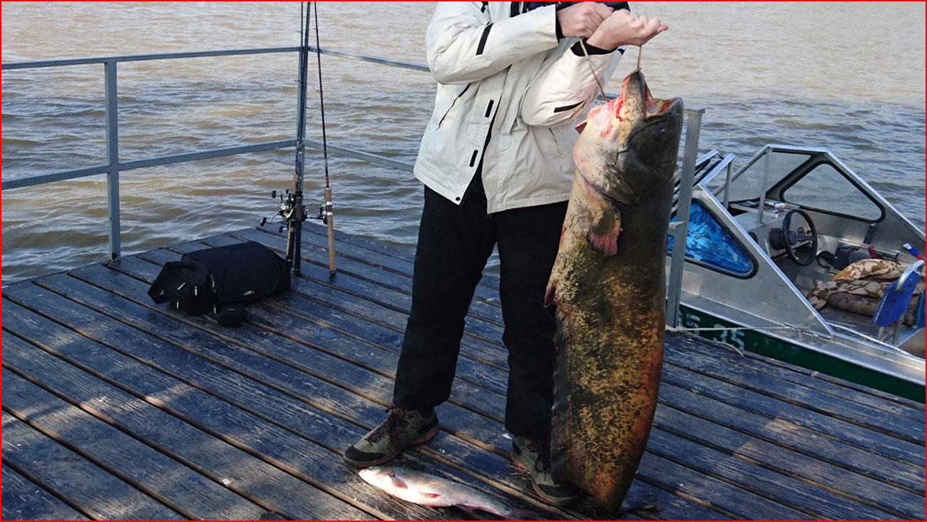 Весенняя рыбалка на раскатах Волги  (гей блюсик 14983)