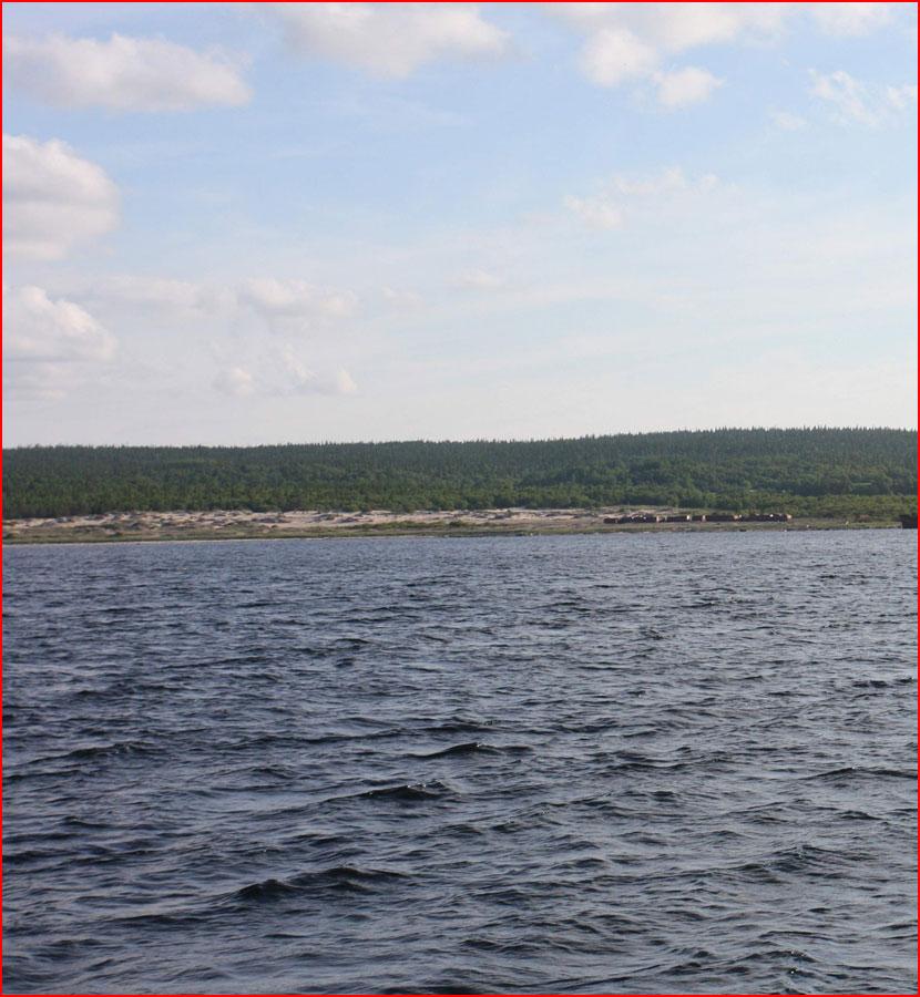 Белое море  (гей блюсик 15315)