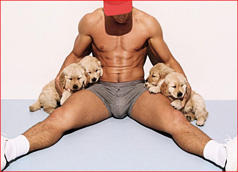 Этюды со щенками  (гей блюсик 15331)