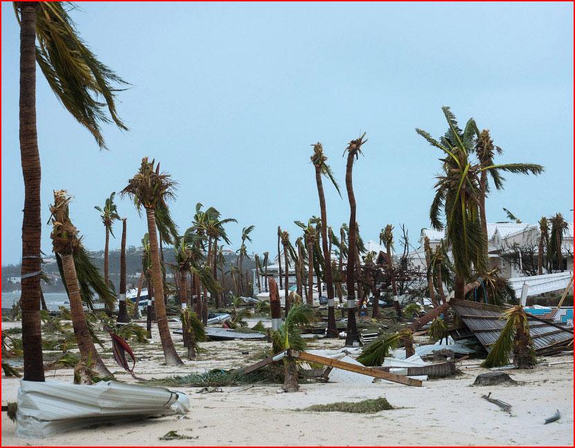 Ураган «Ирма»