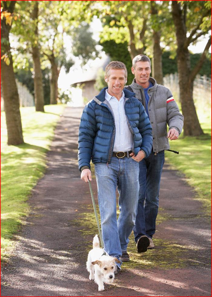 Осенняя прогулка  (гей блюсик 15505)