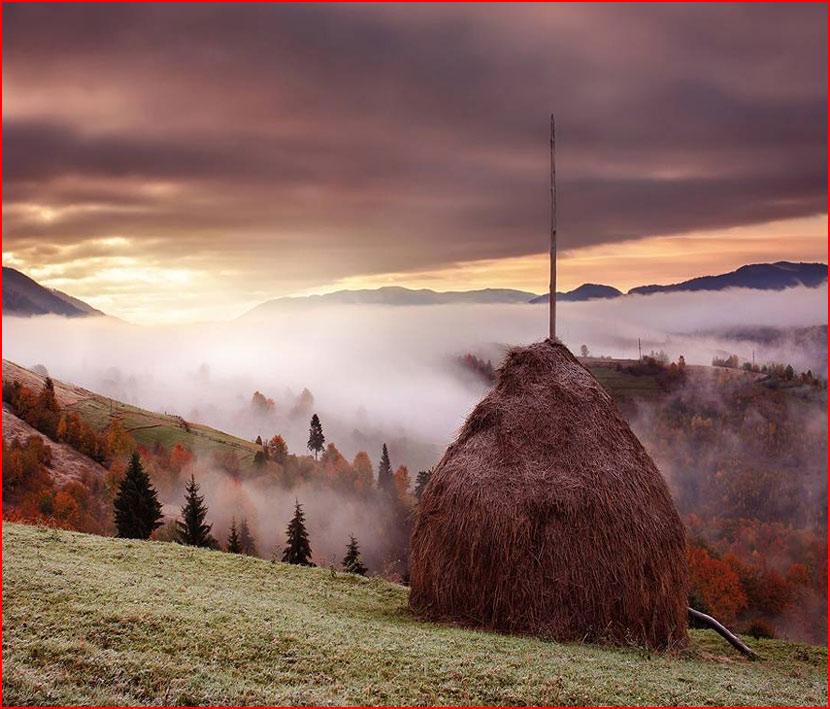 Осенние пейзажи Сергея Полюшко  (гей блюсик 15591)