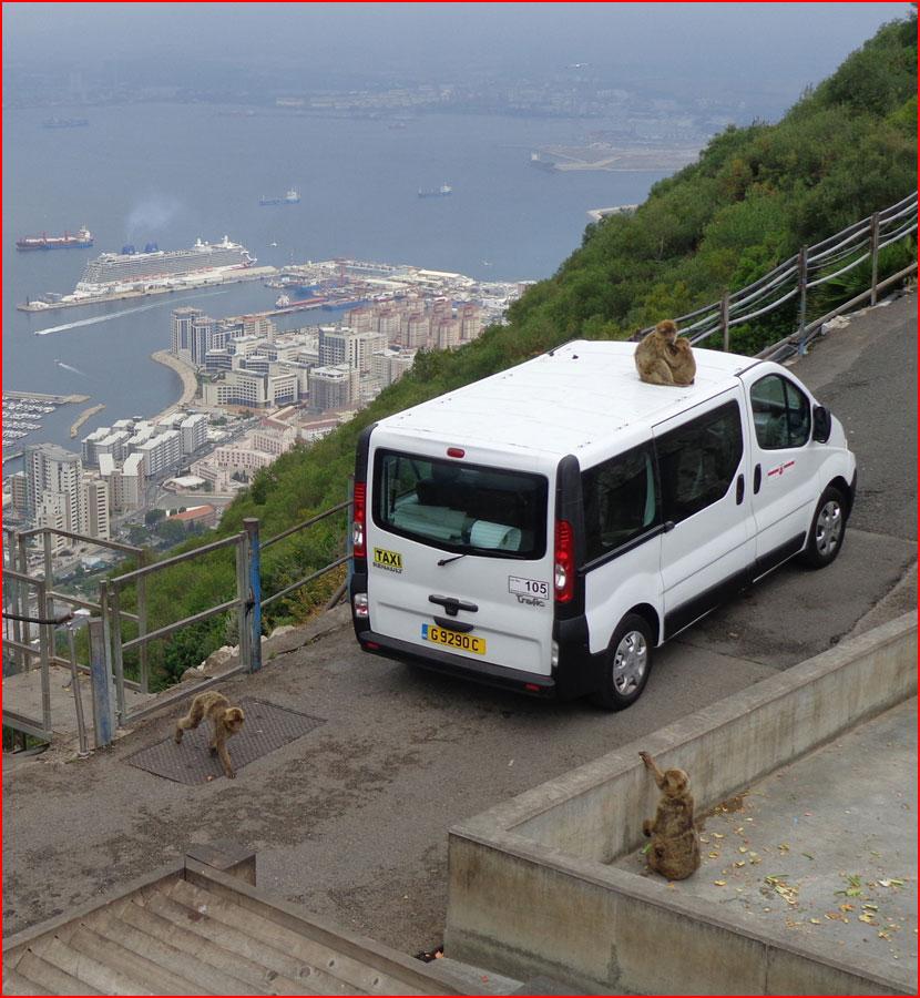 Гибралтар - царство маготов  (гей блюсик 15731)