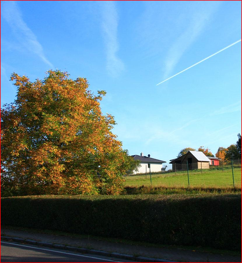 Прогулка по окрестностям осеннего Дрездена