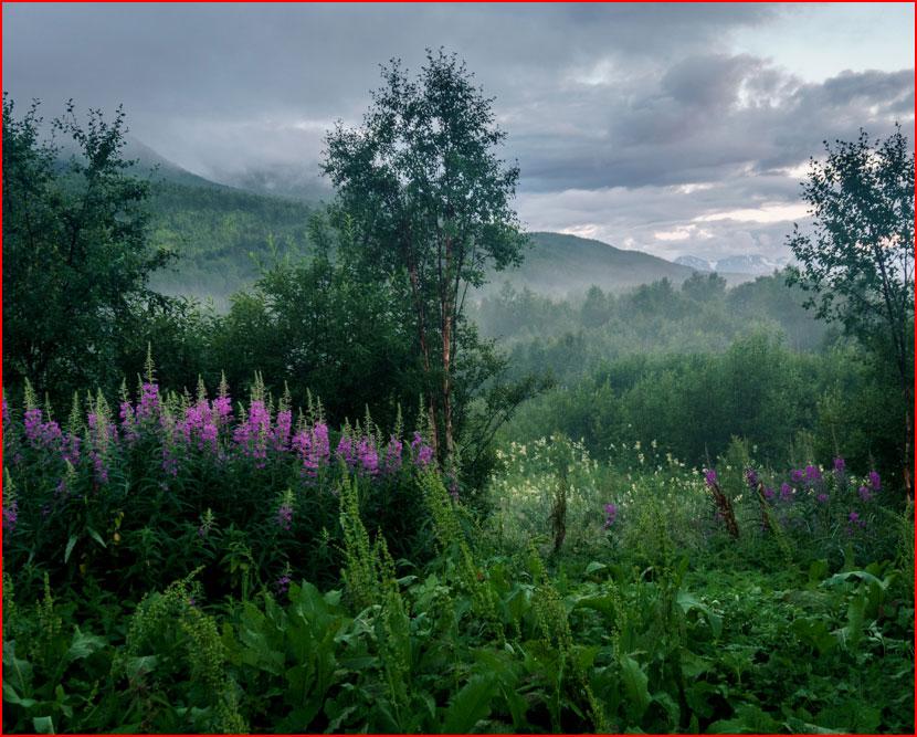 Белые ночи Норвегии. Фотозарисовка  (гей блюсик 15823)