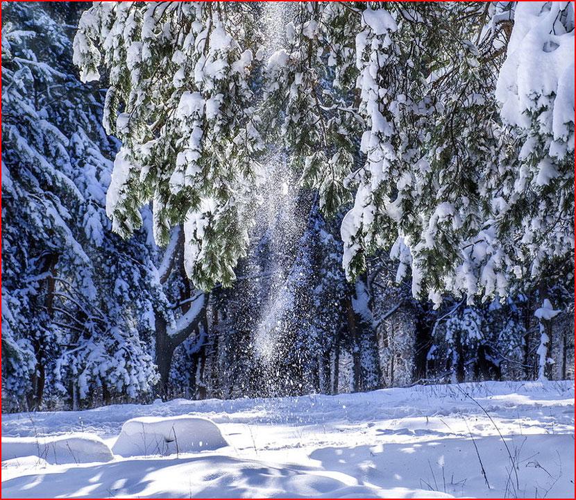 Зимний этюд  (гей блюсик 15951)