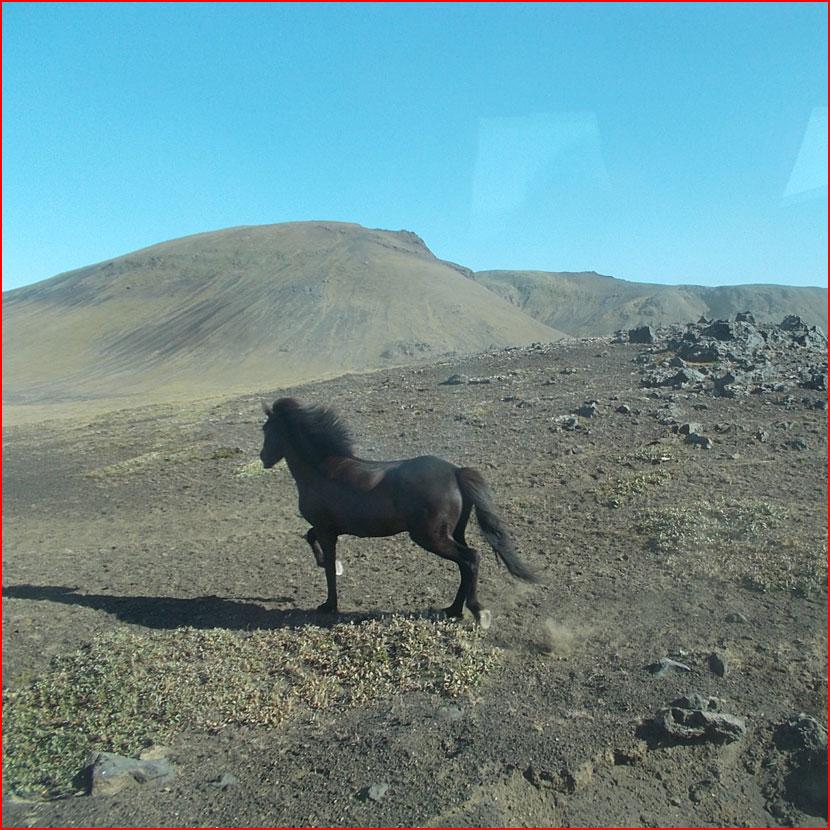 Чудесная Исландия (видео) &  (гей блюсик 16035)