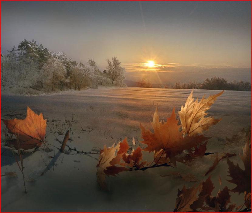 Фотохудожник Игорь Зенин. Царство белых фантазий  (гей блюсик 16087)