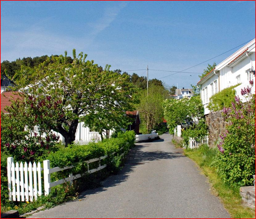 Прибрежный городок  (гей блюсик 16143)