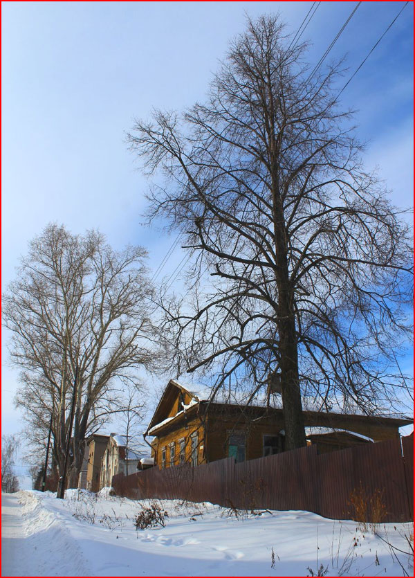 Калязин зимой  (гей блюсик 16155)
