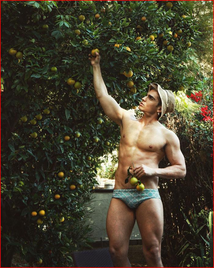 В цитрусовом саду  (гей блюсик 16190)