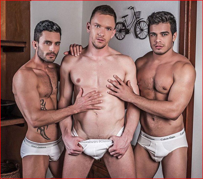 Тройка разгорячённых  (гей блюсик 16196)