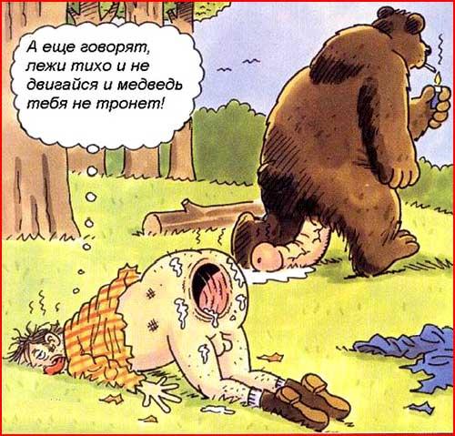 Медведь-шатун  (гей блюсик 162)