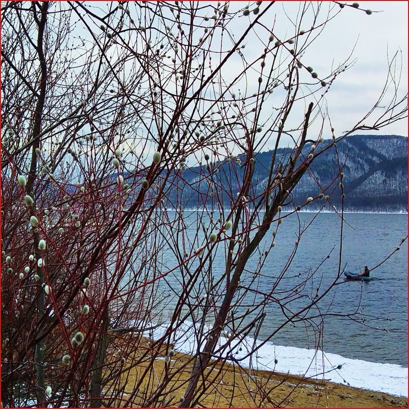 Весна на Волге  (гей блюсик 16343)