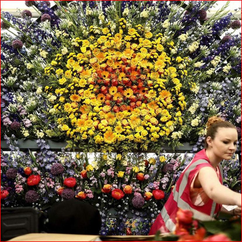 Цветочная выставка The RHS Chelsea Flower Show 2018  (гей блюсик 16519)