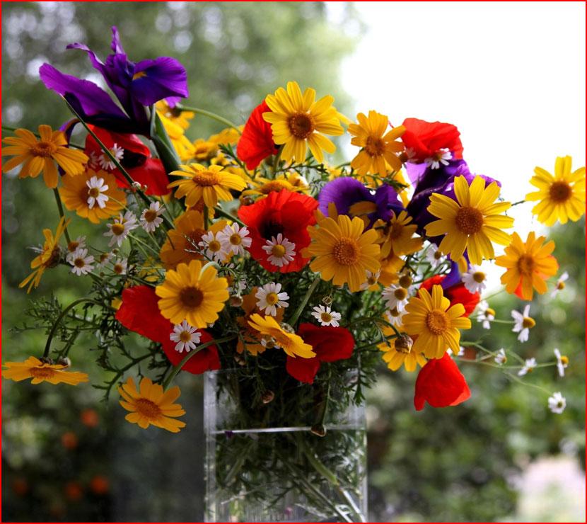 Цветов букет  (гей блюсик 16531)