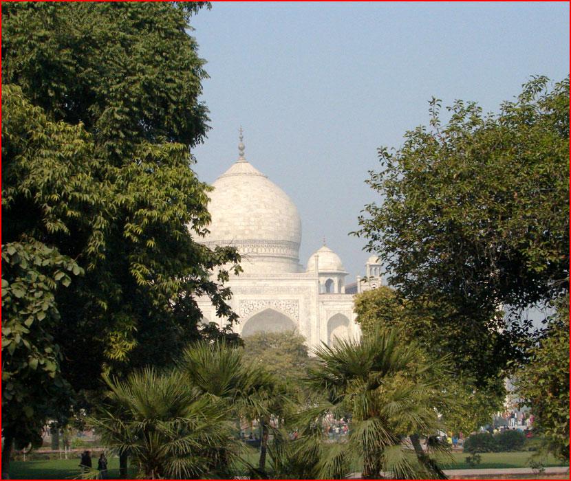 Индийские контрасты  (гей блюсик 16551)