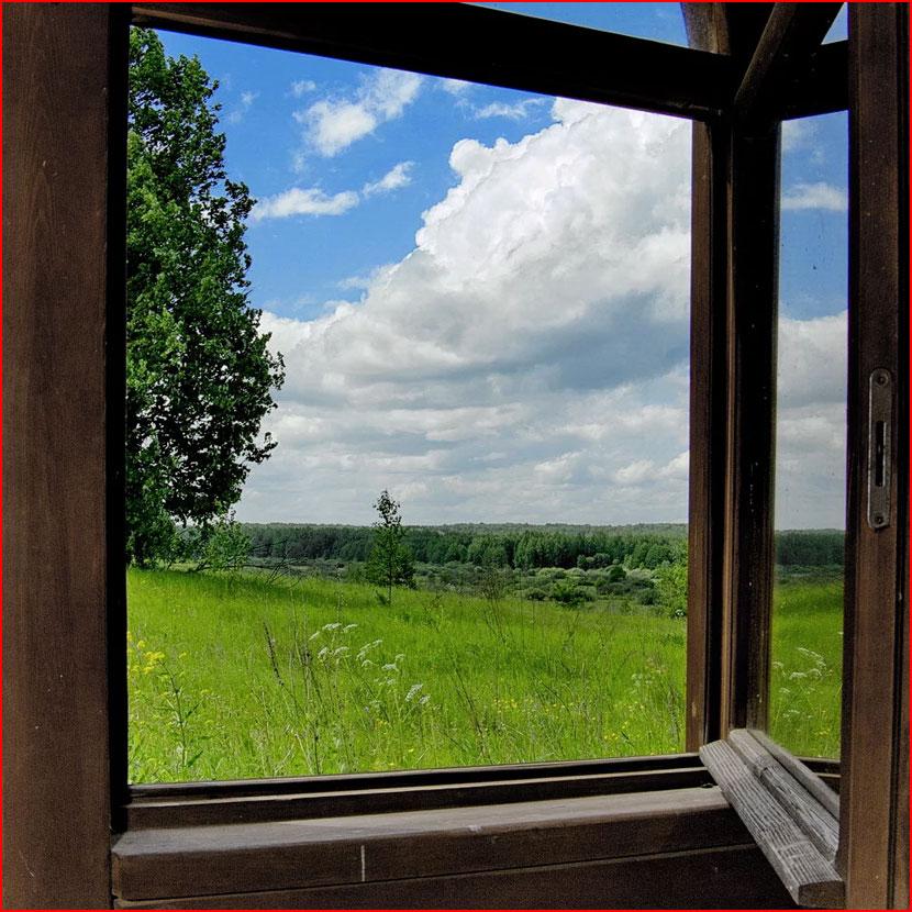 Окно в лето  (гей блюсик 16575)