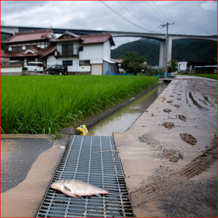 Разрушительное наводнение в Японии