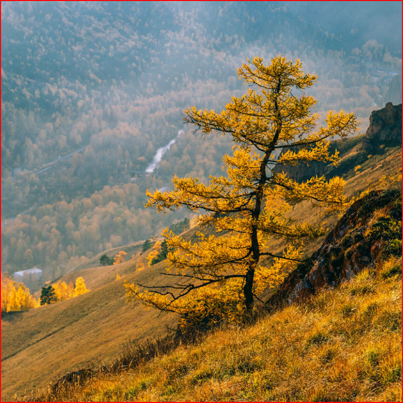 Осенний рассвет на Усть-Манских скалах  (гей блюсик 17171)