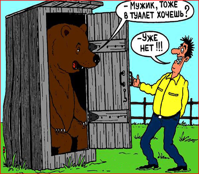 Карикатуры про туалет