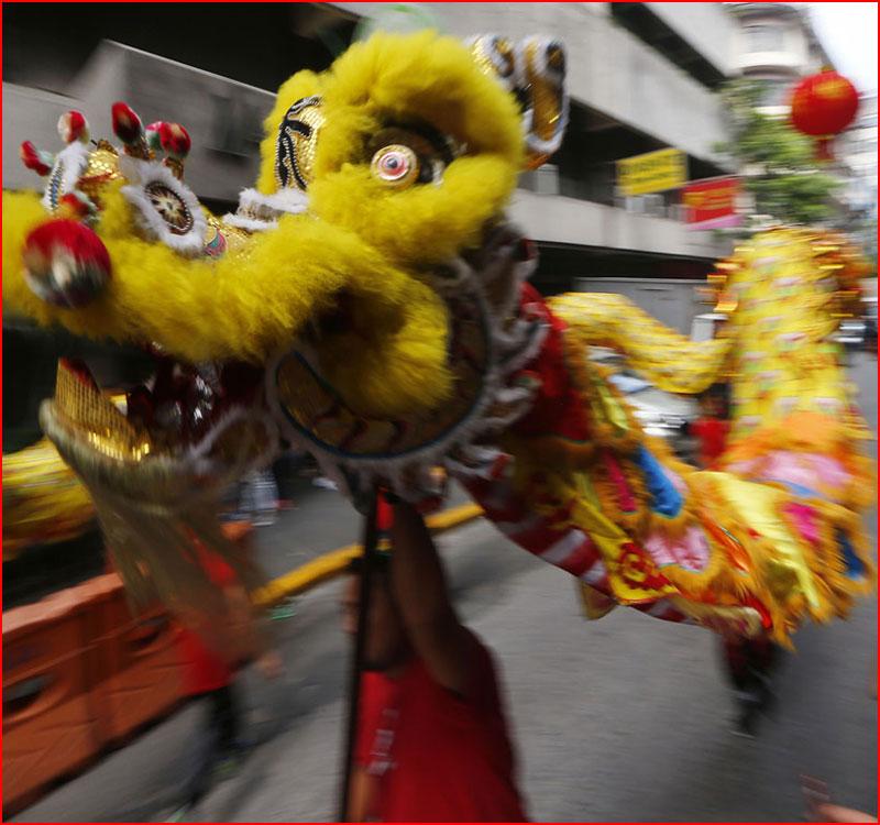 Китайский Новый год 2019  (гей блюсик 17539)
