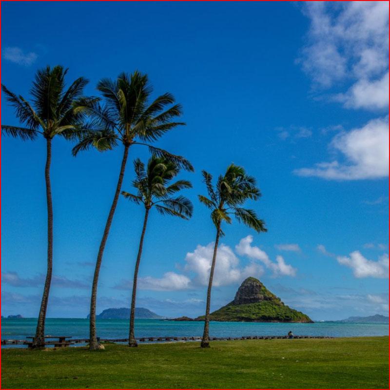 Гаваи. Гонолулу и остров Оаху (фотозарисовка)  (гей блюсик 17607)