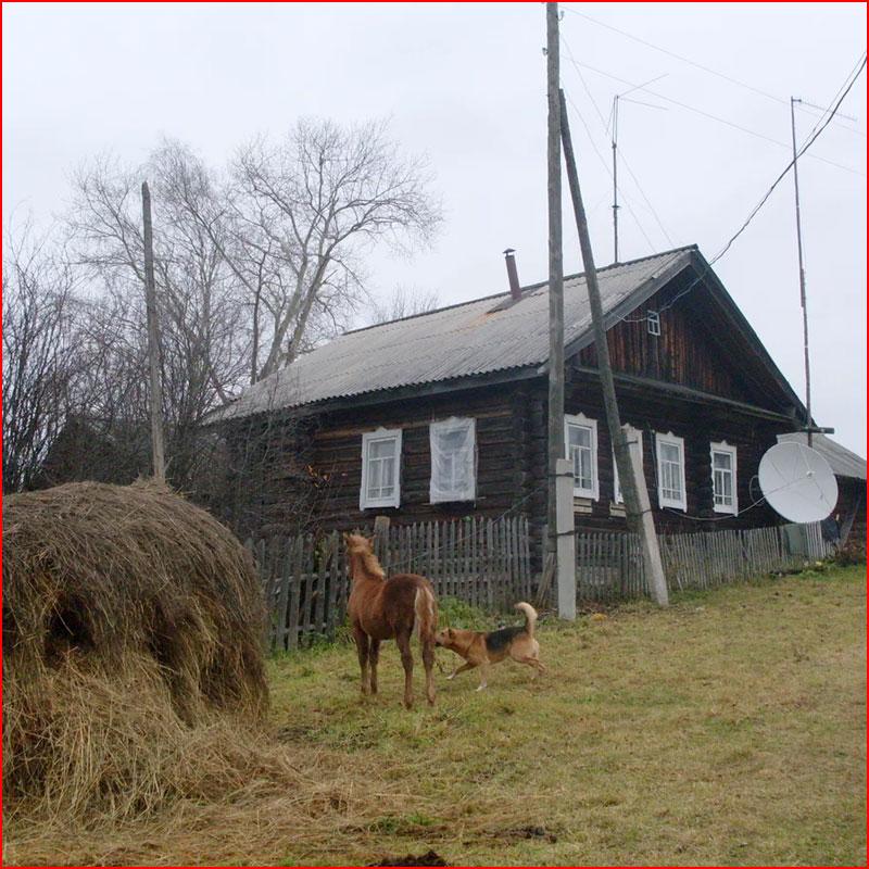 Весна в деревне. Фотозарисовка  (гей блюсик 17743)