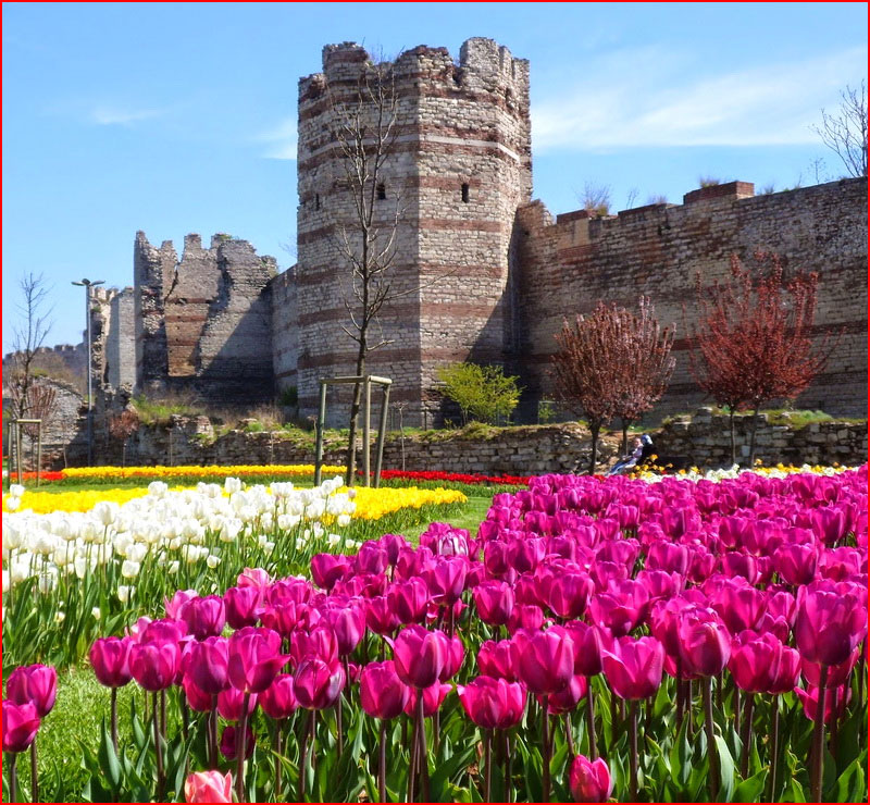 Весенний Стамбул  (гей блюсик 17907)