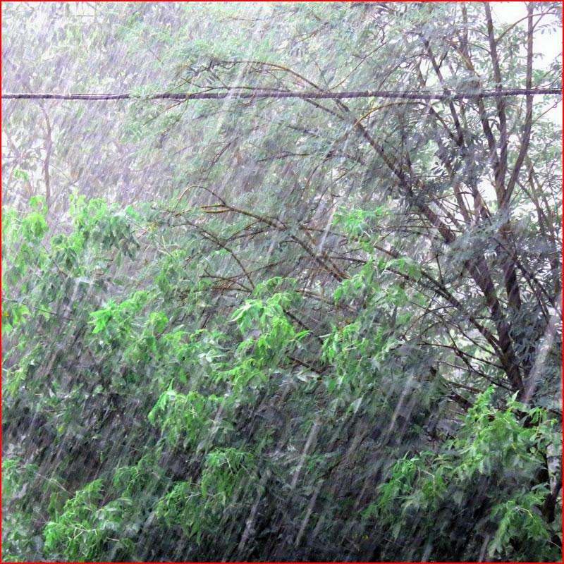 Майский дождь. Фотозарисовка