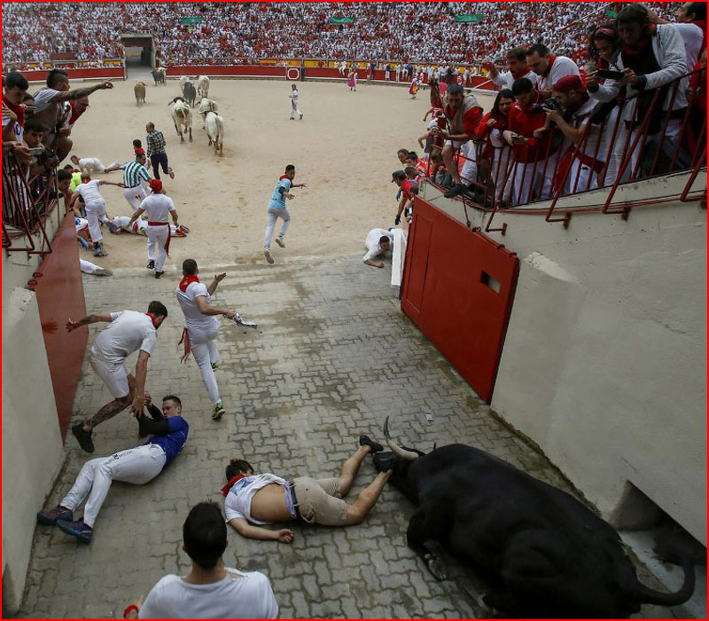 Бега быков: Сан Фермин 2019  (гей блюсик 18151)