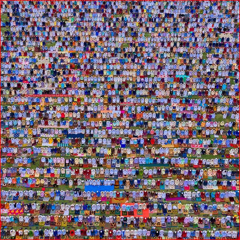 Лучшие фотографии со всего мира от конкурса Agora Awards  (гей блюсик 18391)