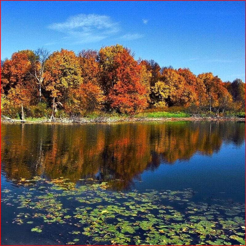 Осень на Волге  (гей блюсик 18399)