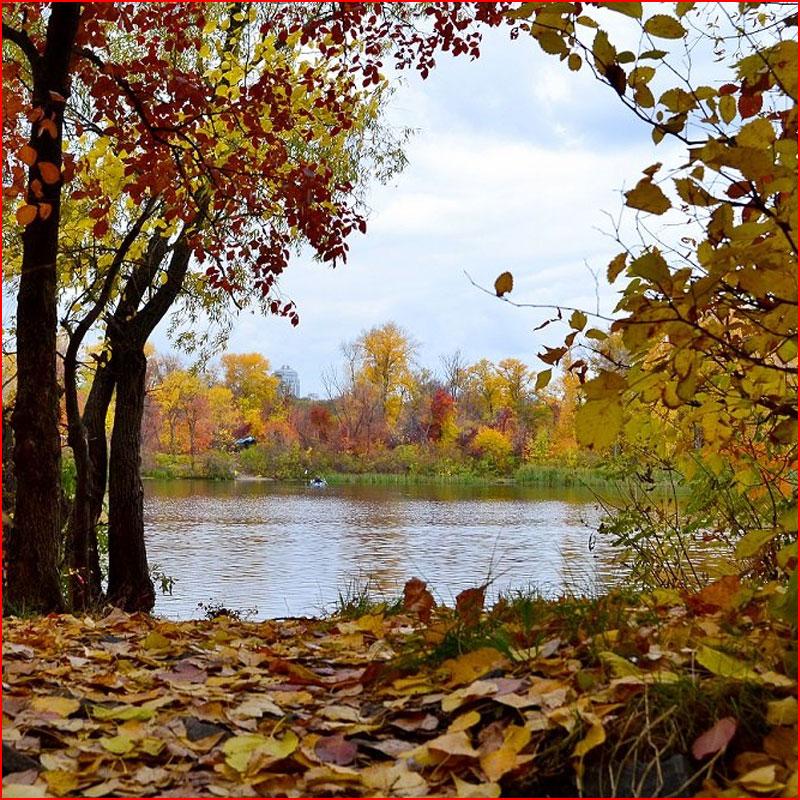 Осенняя зарисовка  (гей блюсик 18431)