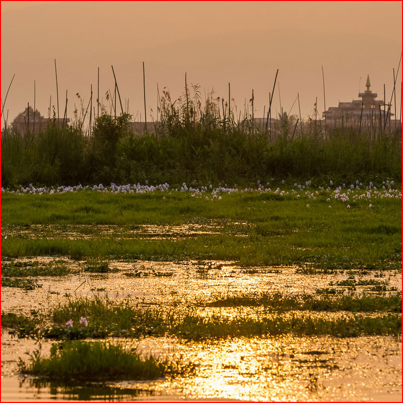 Озеро Инле, или Огород на воде  (гей блюсик 18503)
