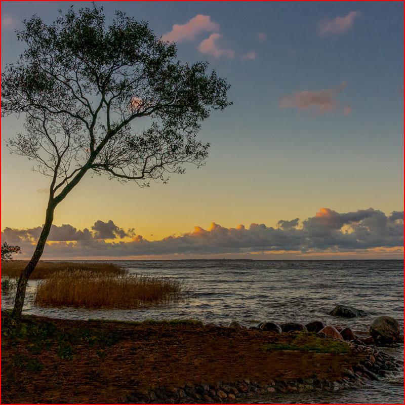Горят закаты  (гей блюсик 18631)