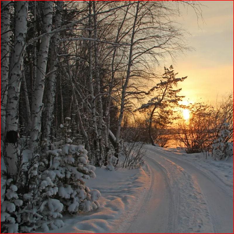 Зимняя дорога. Фотозарисовка