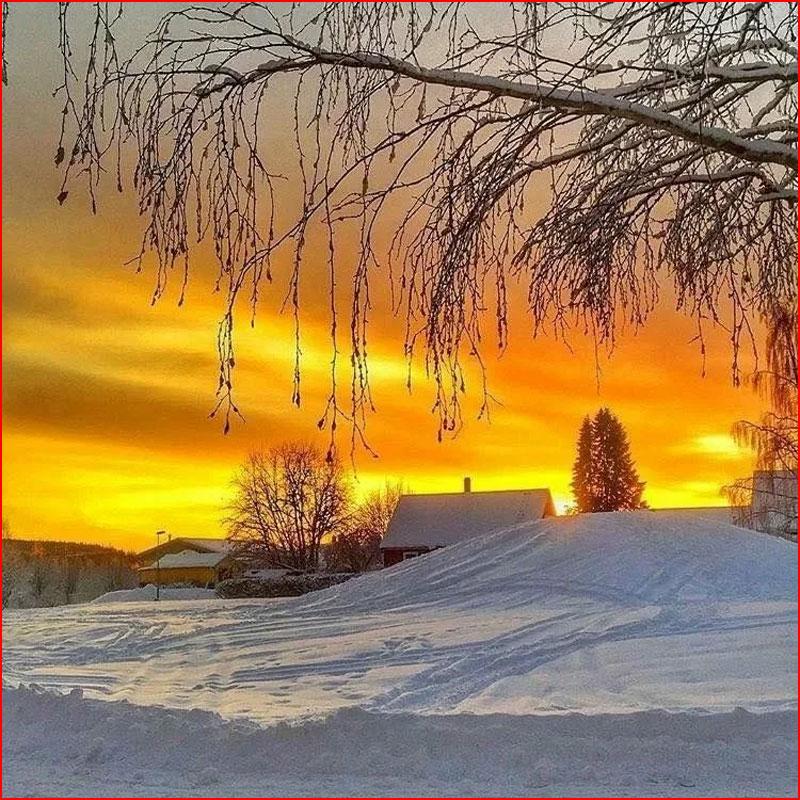Зимние закаты  (гей блюсик 18823)