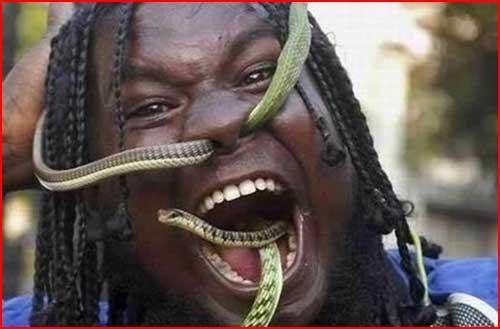 Заклинатель змей  (гей блюсик 1887)