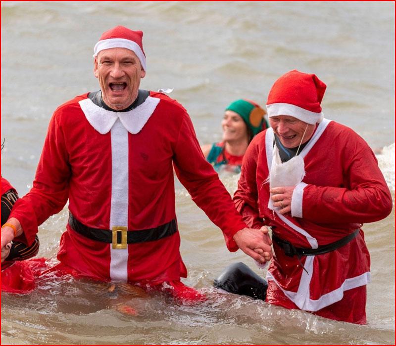 Рождественские моржи и пингвины из Англии