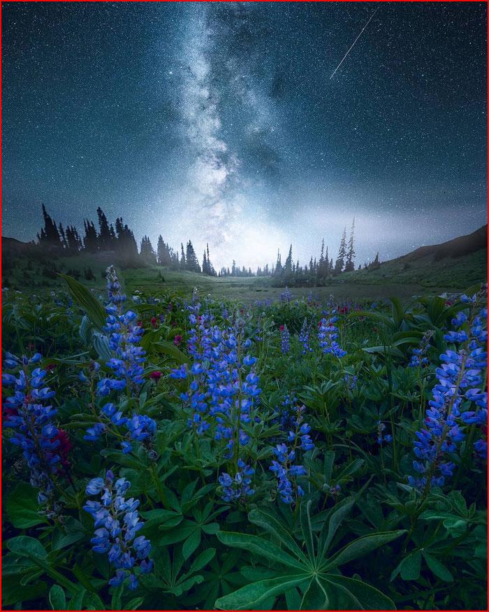 Мечтательные пейзажи, вдохновленные космосом  (гей блюсик 19311)