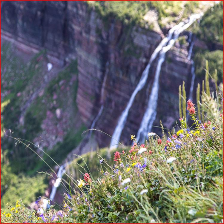 Национальный парк Глейшер  (гей блюсик 19519)